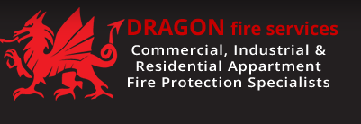 Dragon Fire Services